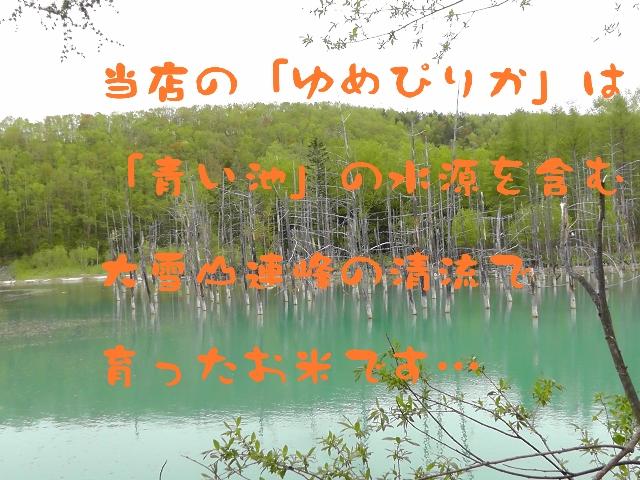 青い池,認定マーク,ゆめぴりか,